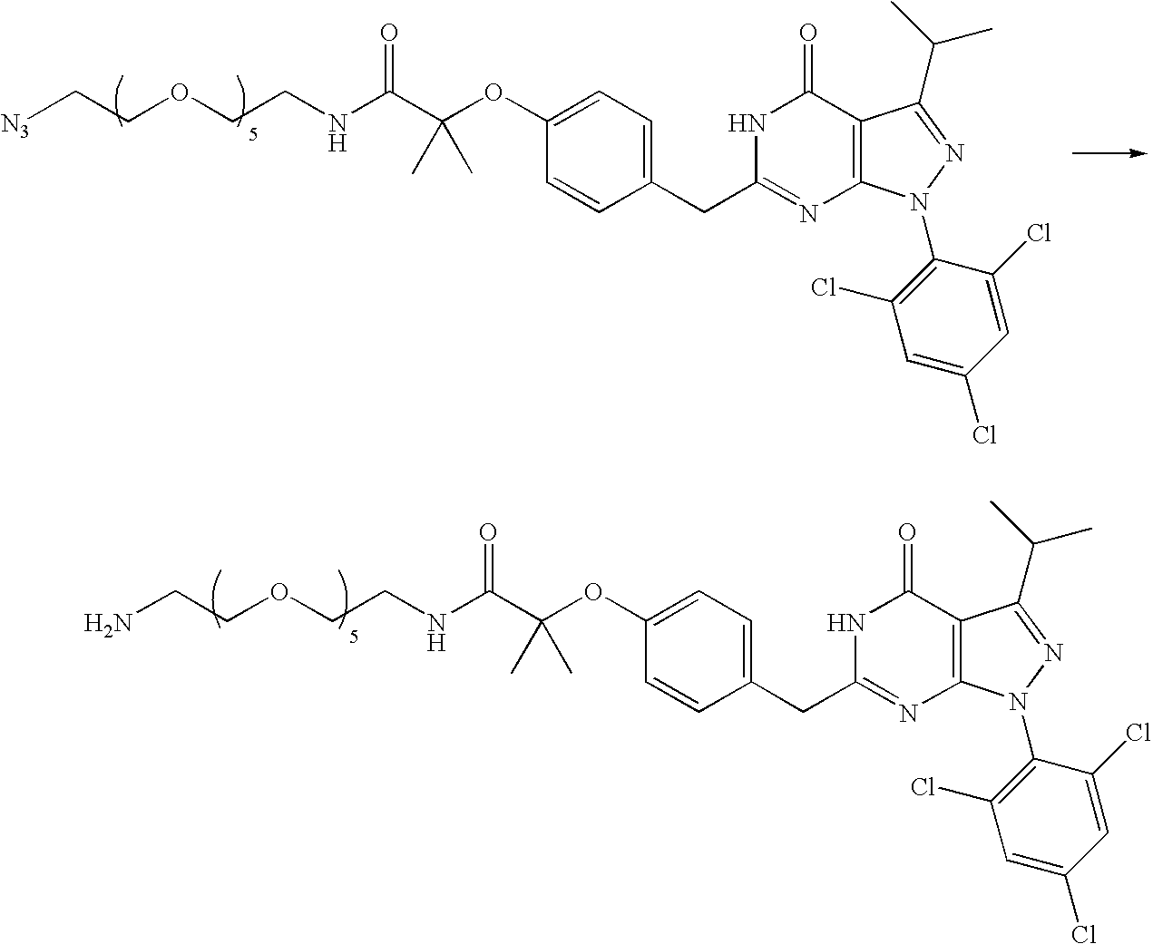 Figure US07605175-20091020-C00063