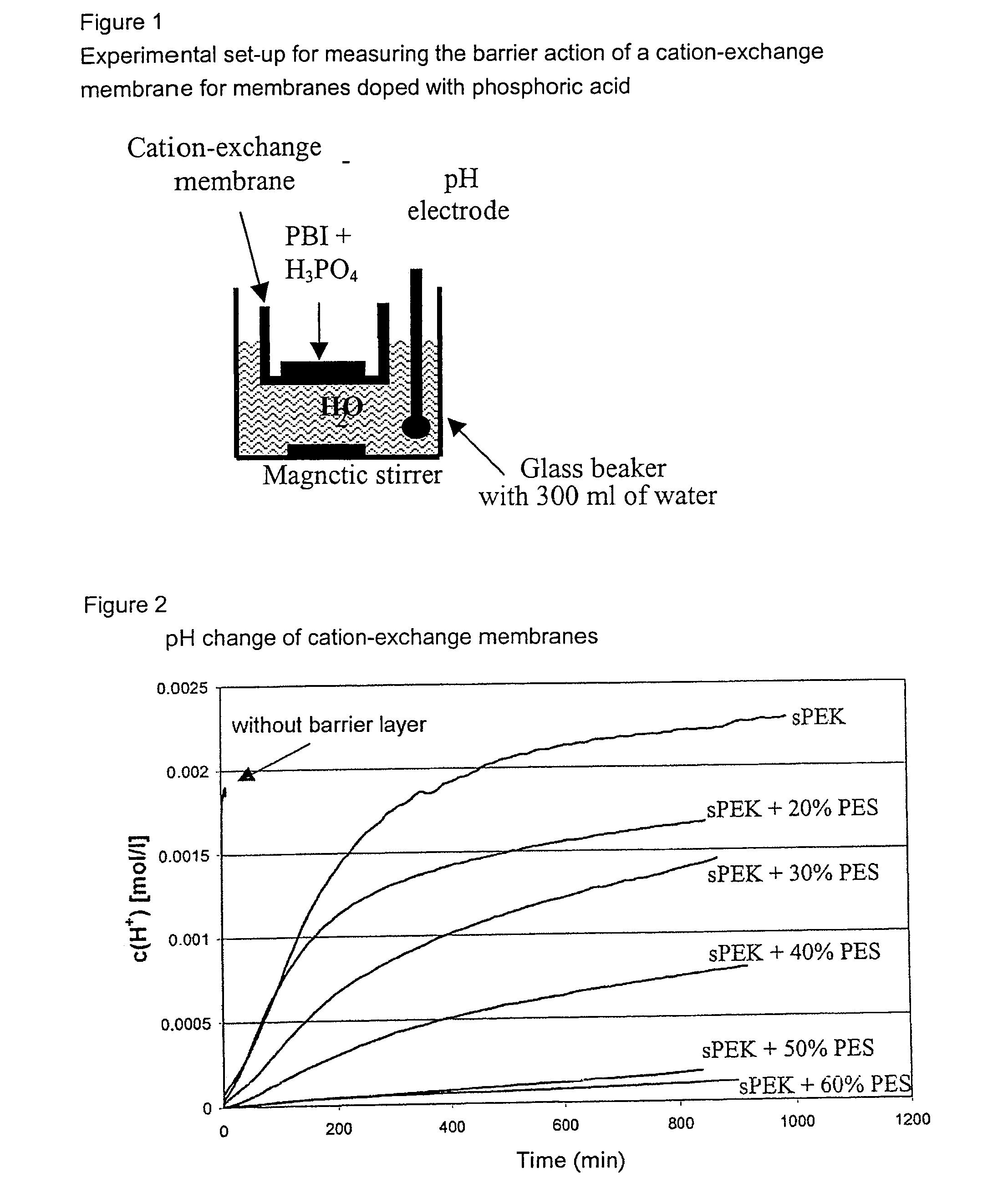 patent us7625652 multilayer electrolyte membrane google patentsuche. Black Bedroom Furniture Sets. Home Design Ideas