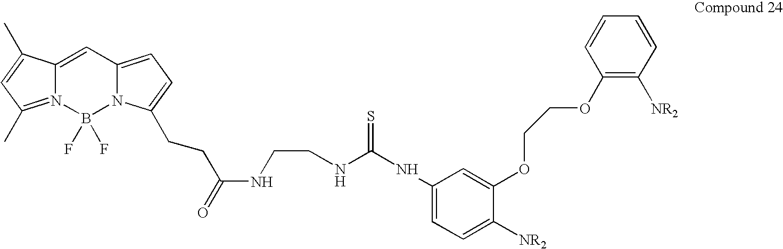 Figure US07776533-20100817-C00024