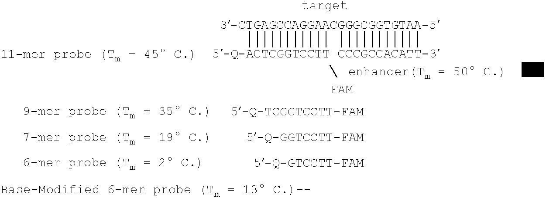 Figure US07790385-20100907-C00003