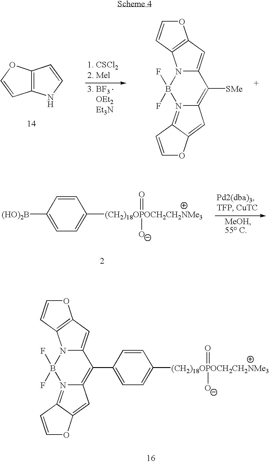 Suzuki Coupled Cyanine