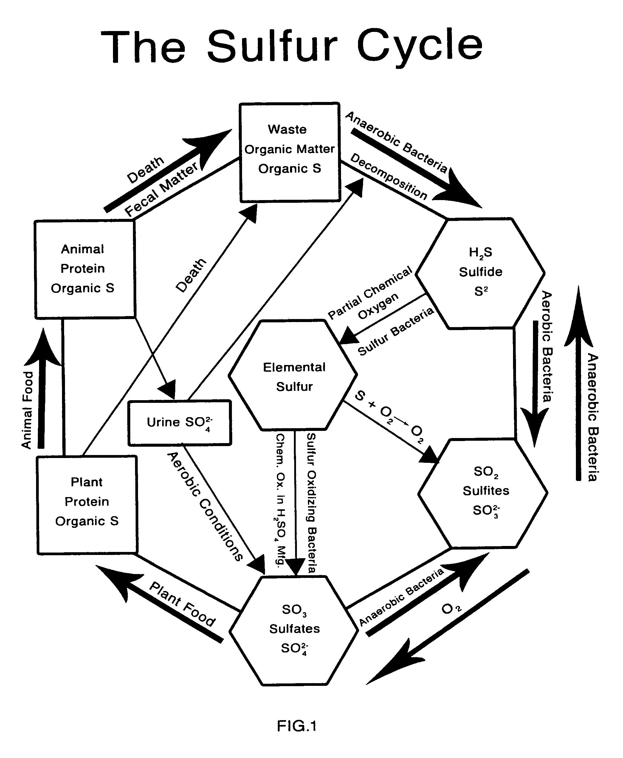 patent us8092118 - carbon sequestration method