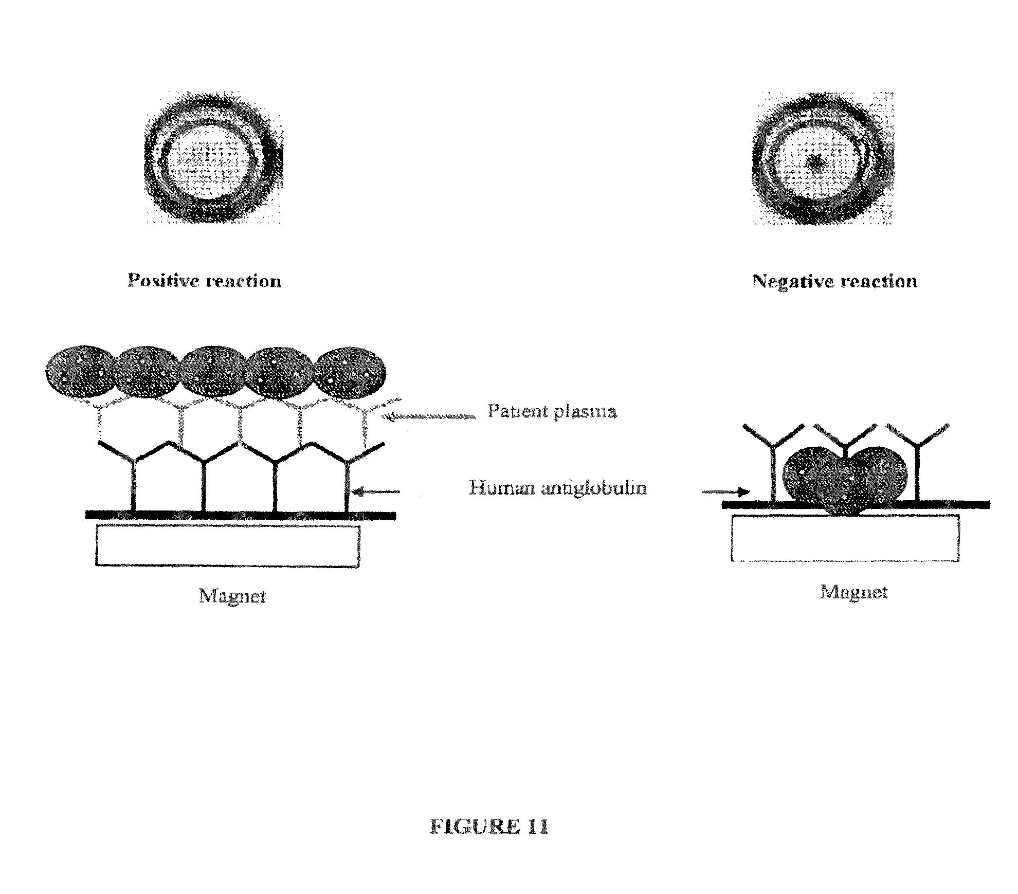 Magnetic Immunodiagnostic Method For