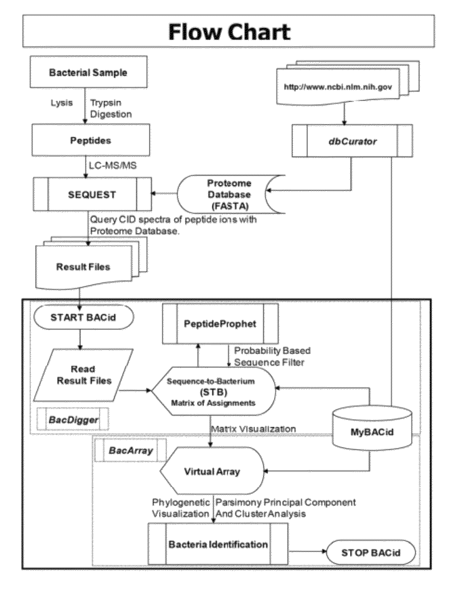 (PDF) Effect of fermentation length and varieties on the ... |Flow Chart Identifying Powders