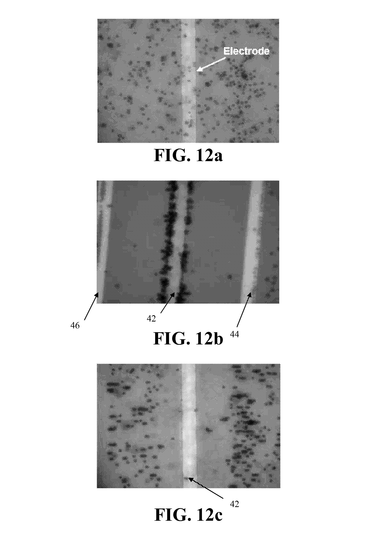 dielectrophoresis thesis Etdlibraryvanderbiltedu.