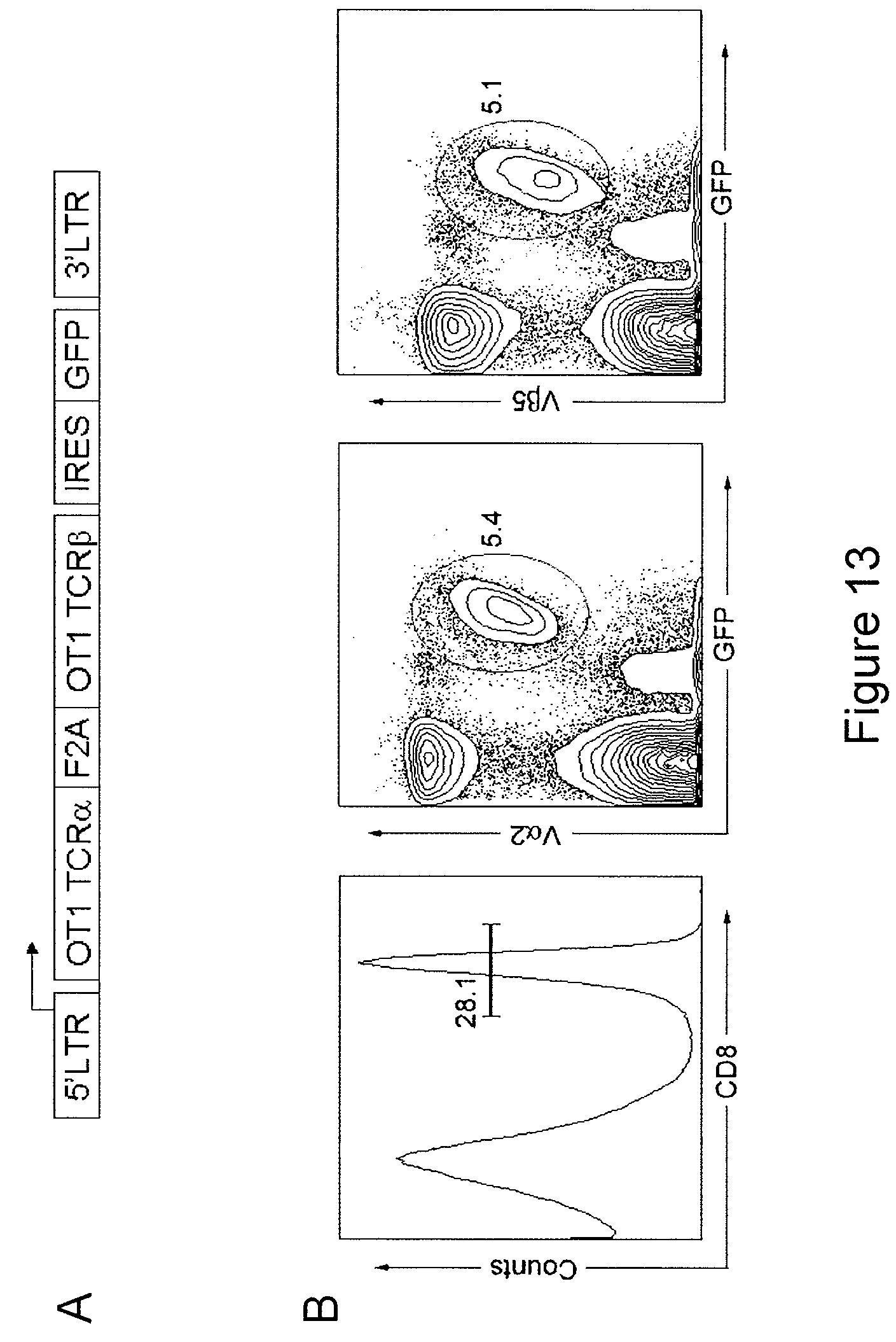 farmall b wiring diagram wiring diagram and schematic design farmall b wiring diagram nest