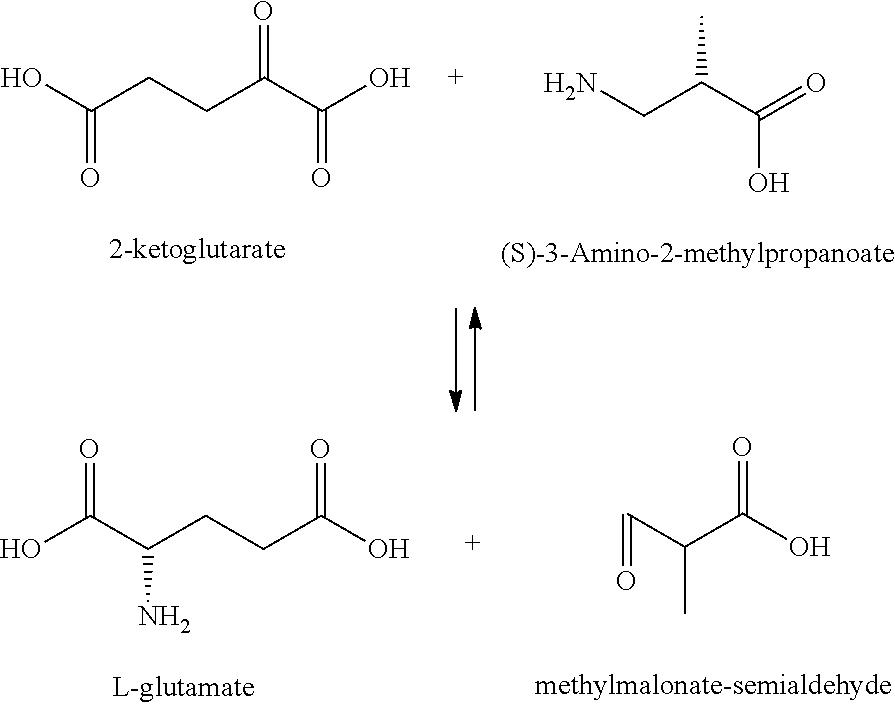 2-aminohexanoate transaminase