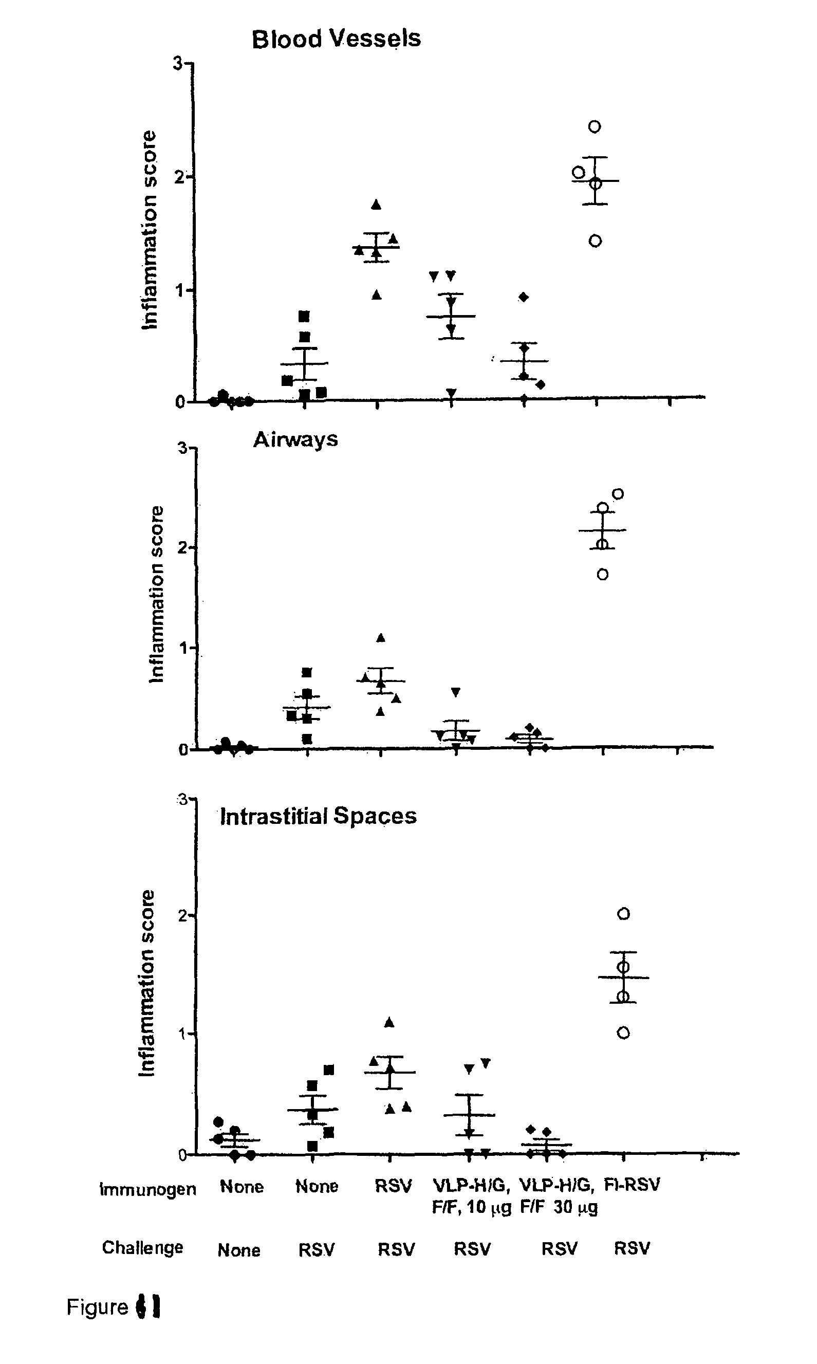 rsv vaccine formulation Type 1 and 2 immunity following vaccination is influenced by nanoparticle size: formulation of a model vaccine for respiratory syncytial virus.