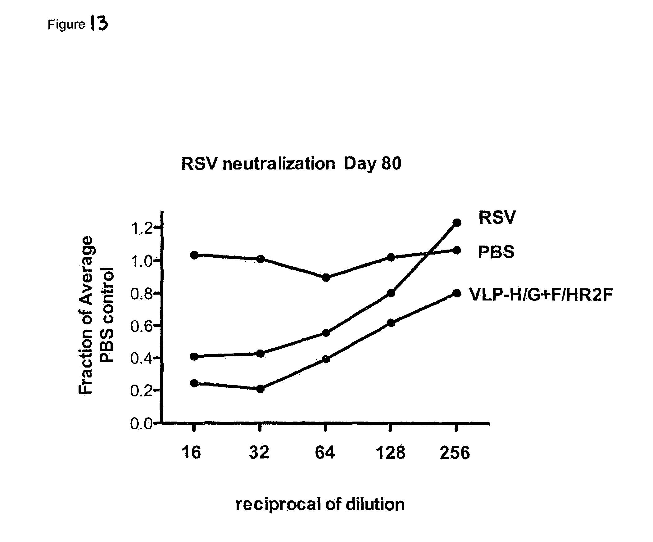 rsv vaccine formulation • vaccines for active immunization of rsv-naïve infants should induce neutralizing antibodies, cd4 and cd8 responses  formulation selection phase iii 2-3mo infants.
