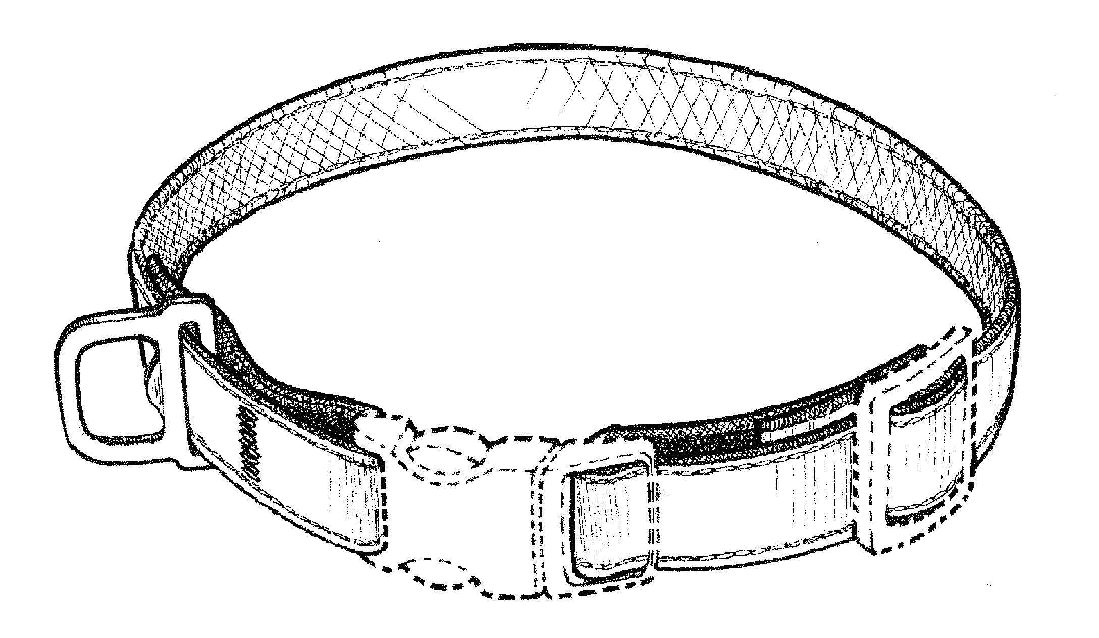 dog collar drawing