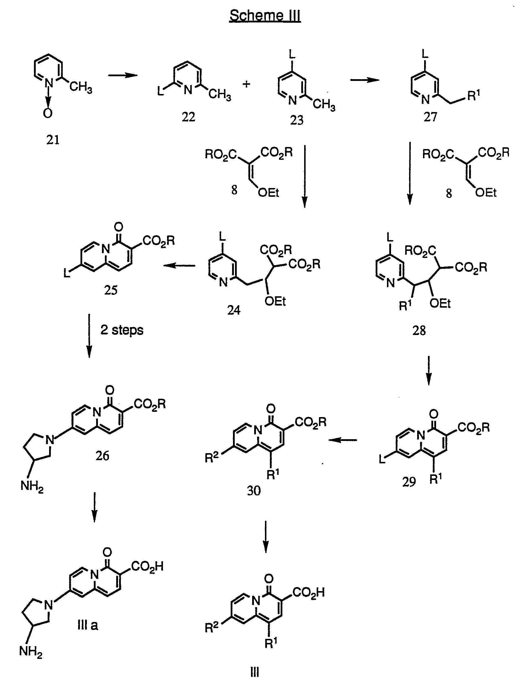 Patent Wo1991016894a1 Quinolizinone Type Compounds
