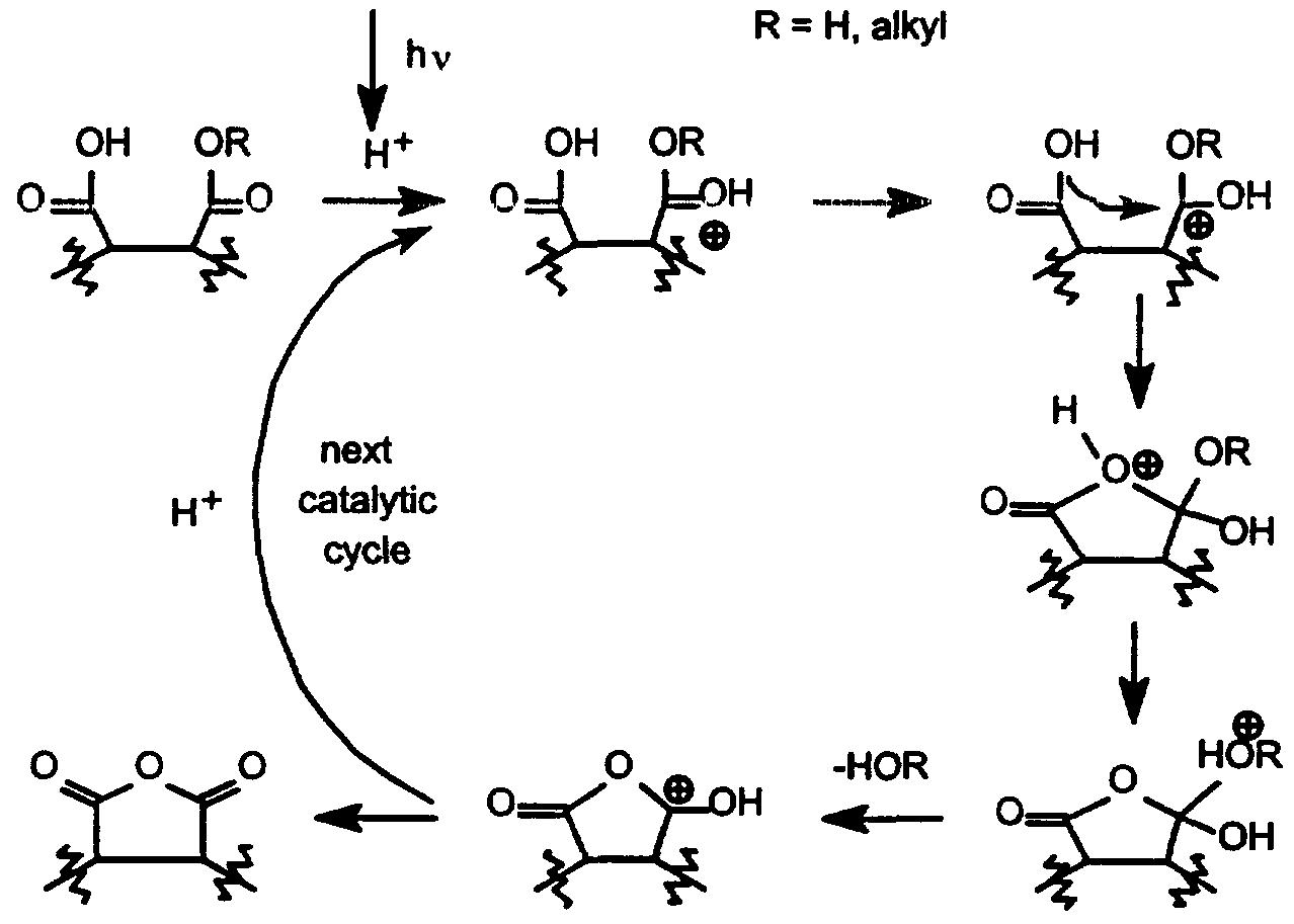 hydrolysis mechanism of maleic anhydride wwwpixshark
