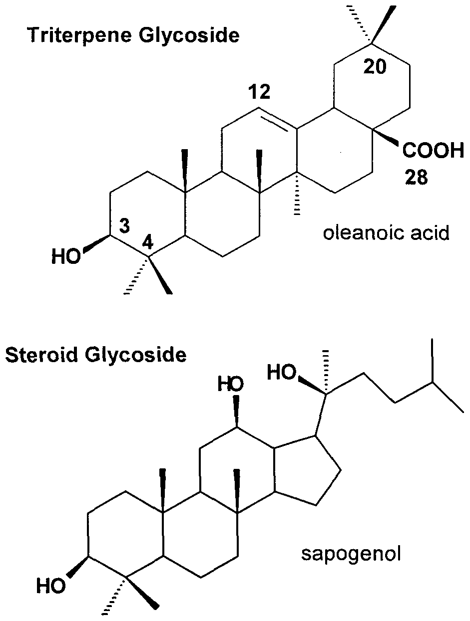 steroid chemical structure