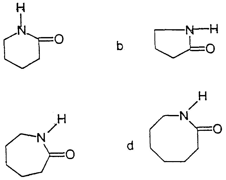 Making Nylon From Lactams 91