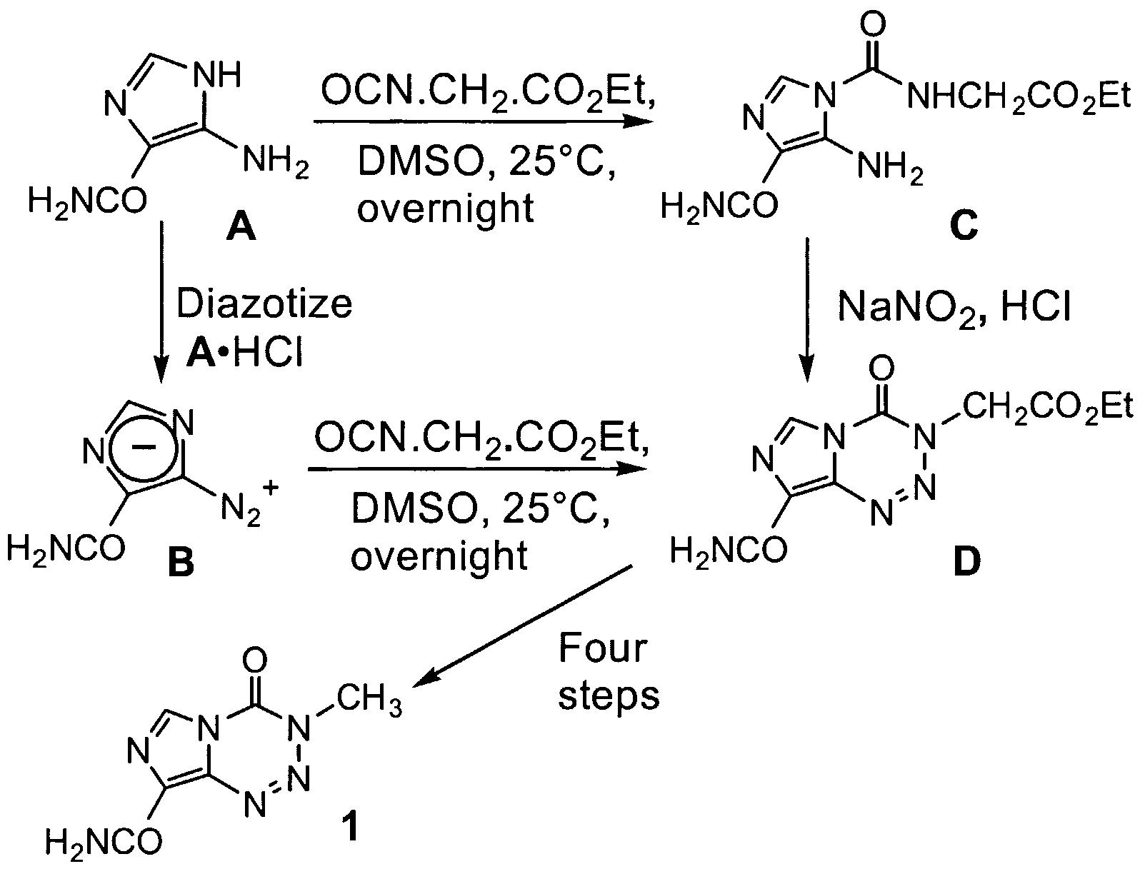 Chloroquine resistant bacteria dissertation