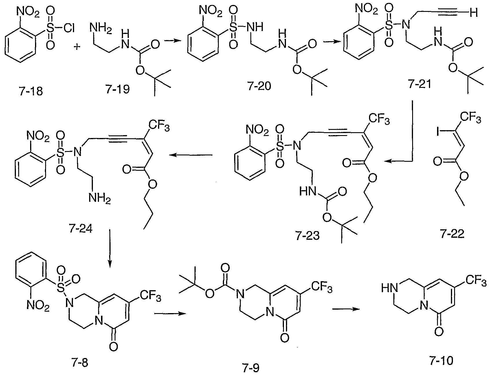 williamson ether synthesis of phenacetin View info on phenacetin  synthesis was reported in 1878 by harmon northrop morse phenacetin may be synthesized as an example of the williamson ether synthesis:.