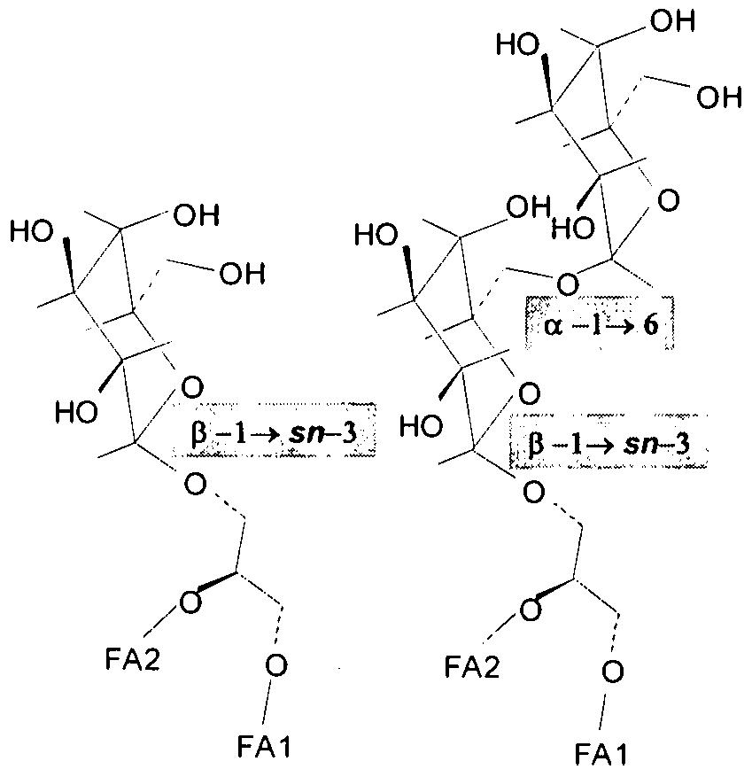 Patent WO2008146174A2 - Use of compounds having a ...  Patent WO200814...