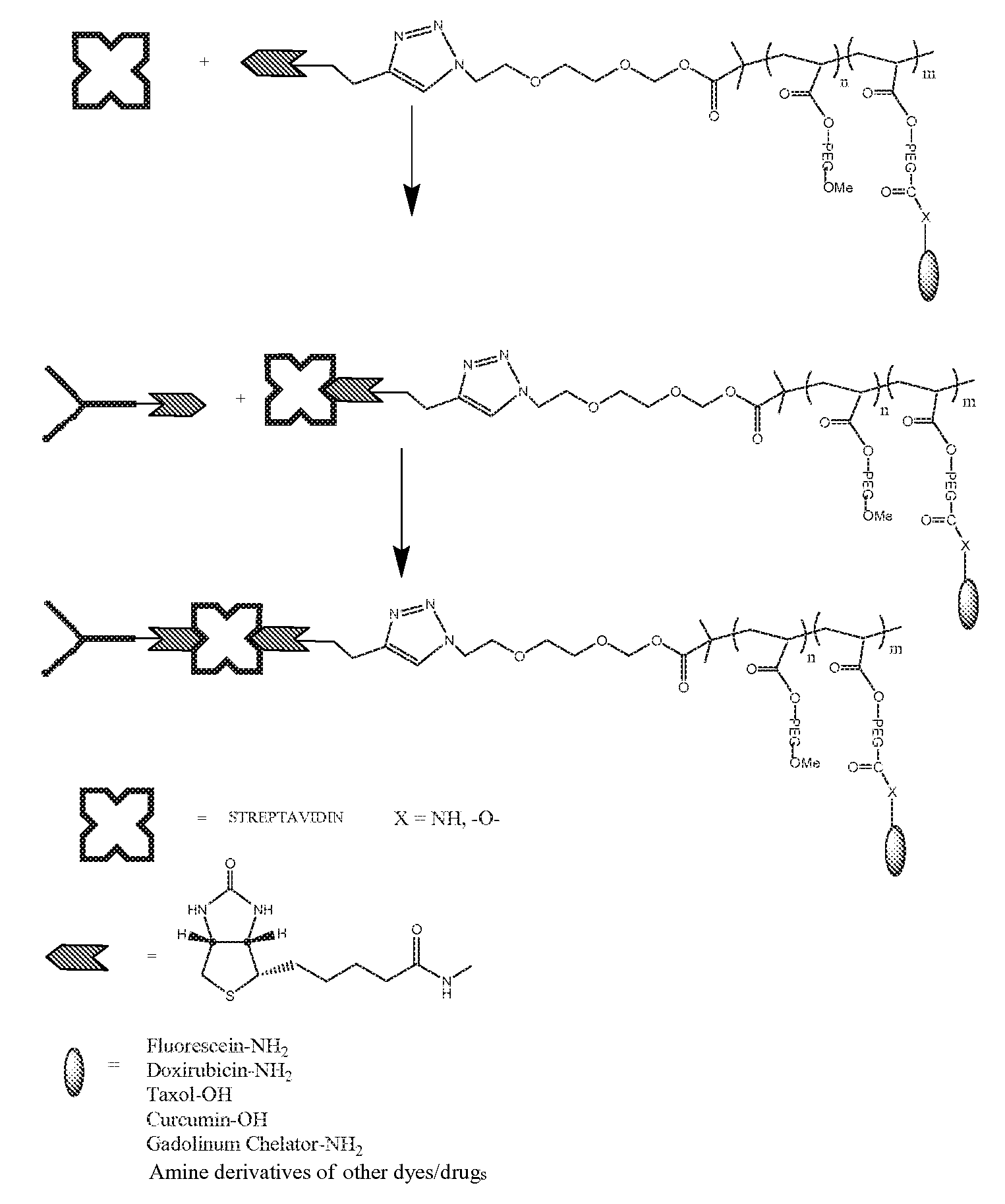 NEW EXAMPLES OF PROTEIN BINDING DRUGS