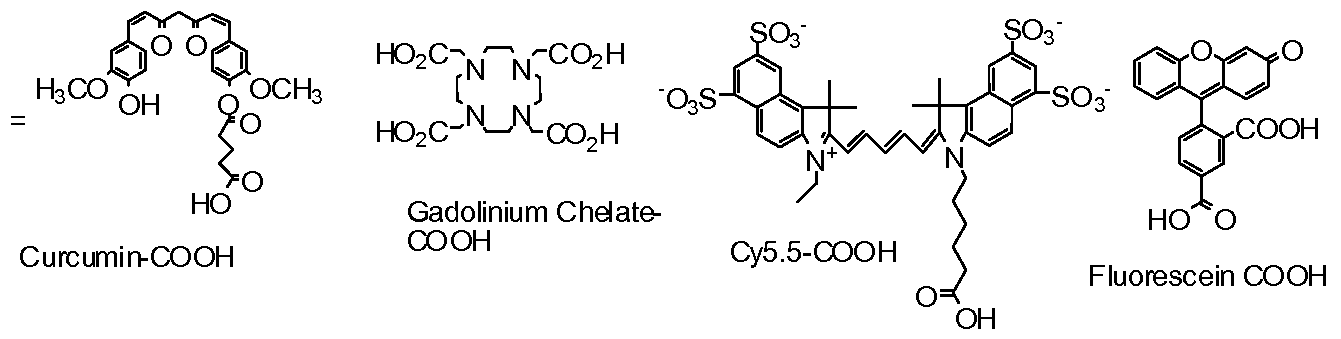 Sulfhydryl Group Examples Patent WO2009140683A1 ...