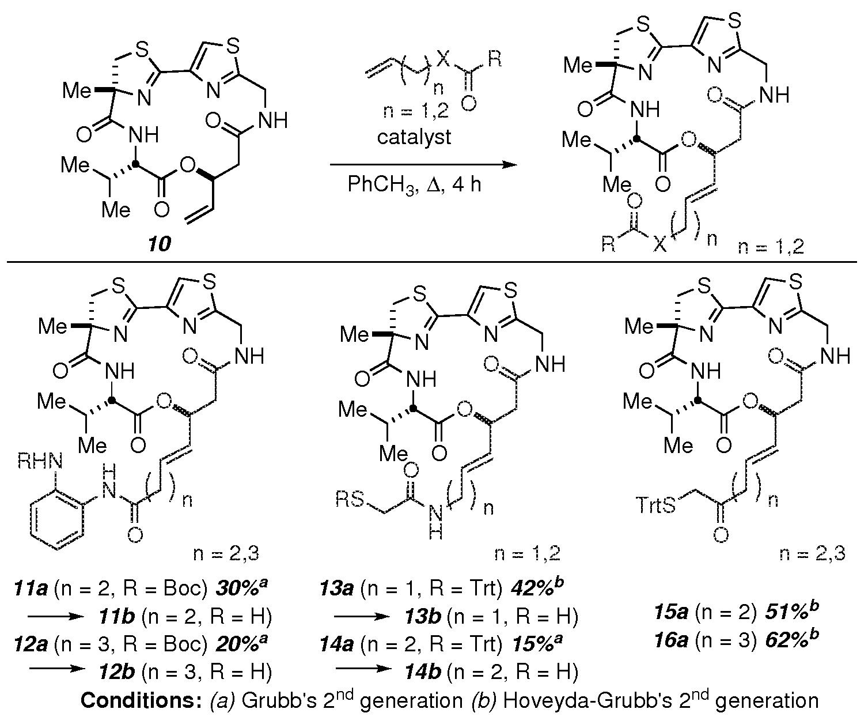 25E: Alkene Oligomerization