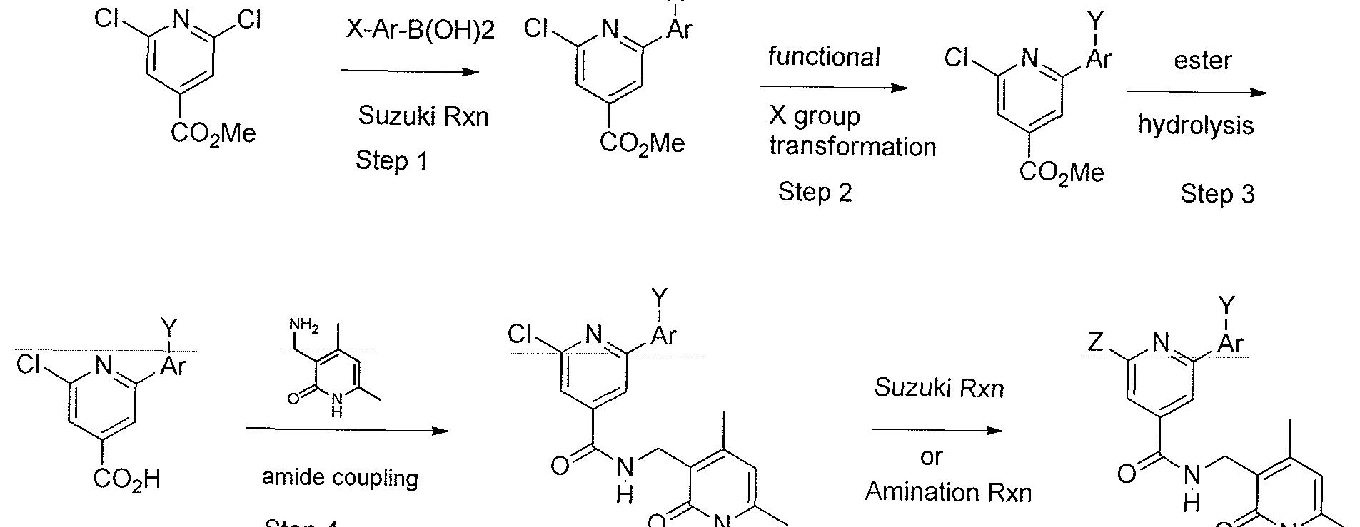 Iodophenol Suzuki