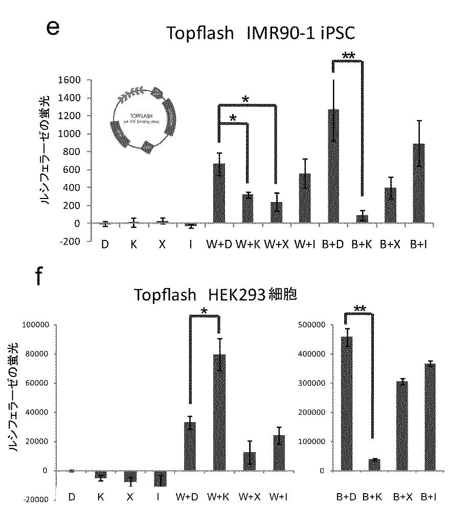 WO2013111875A1 - 多能性幹細胞の心筋分化誘導法         - Google PatentsFamily