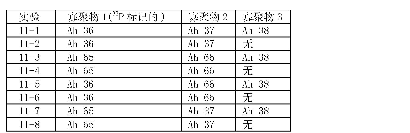 Figure CN101006177BD00401