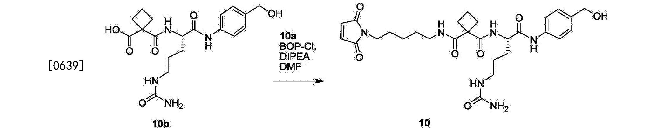 CN107206102A - Anti-staphylococcus aureus antibody rifamycin