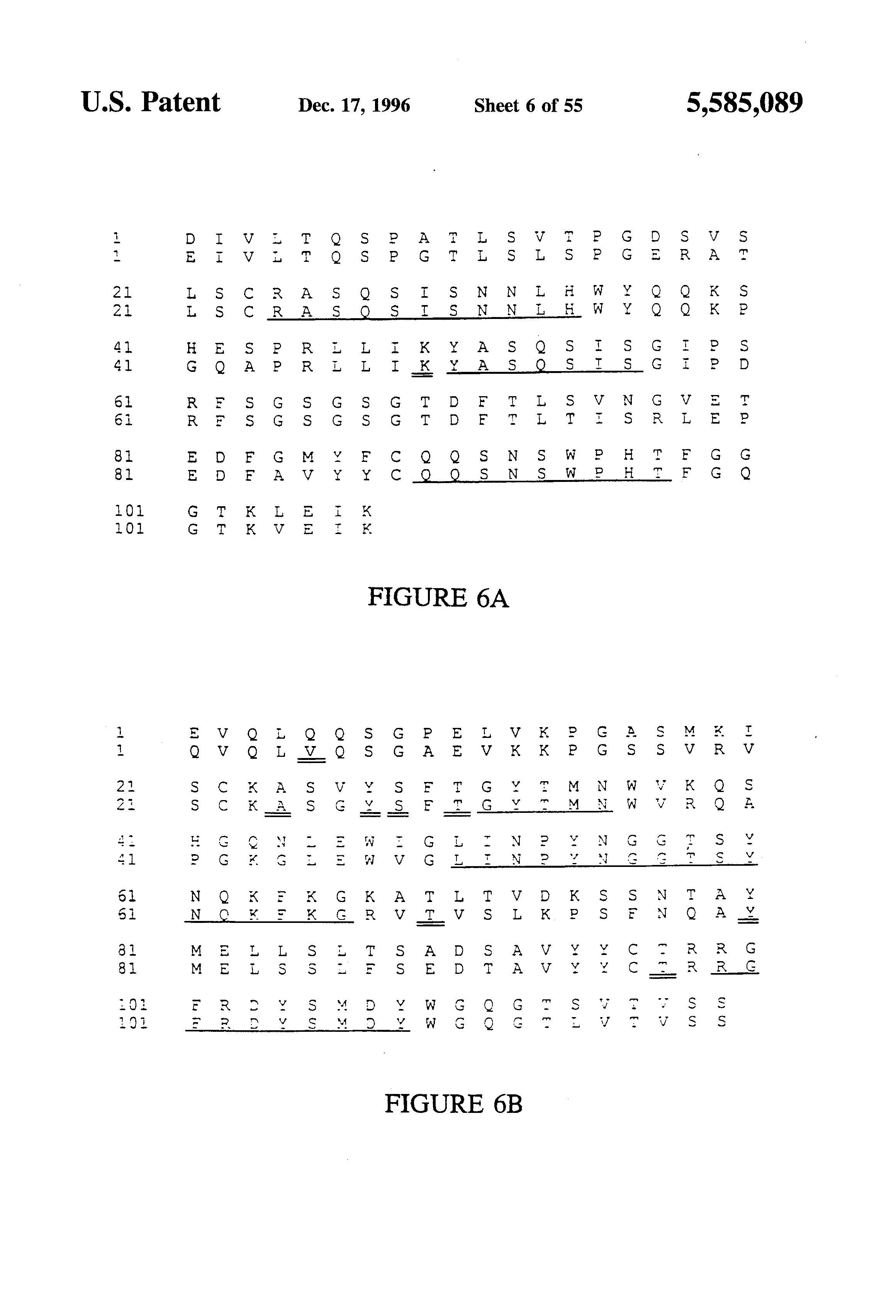 US5585089A - Humanized immunoglobulins - Google Patents