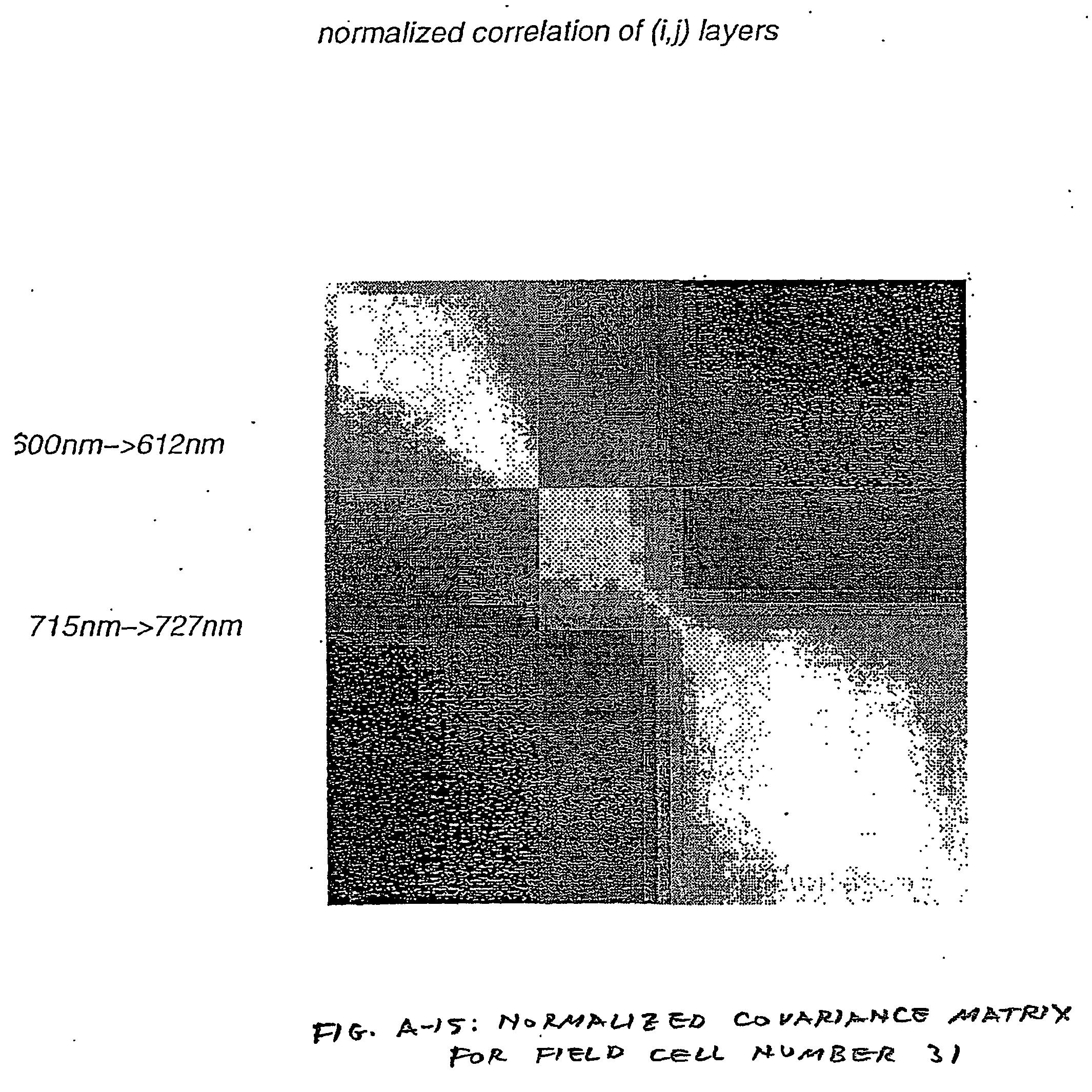 Figure US20070080851A1-20070412-P00013