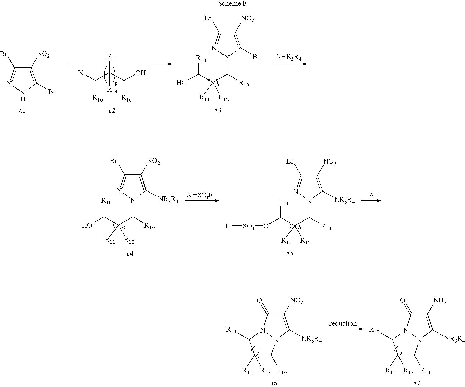 Figure US07485156-20090203-C00040