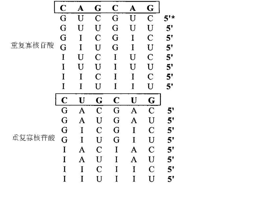 Figure CN101980726AD00212