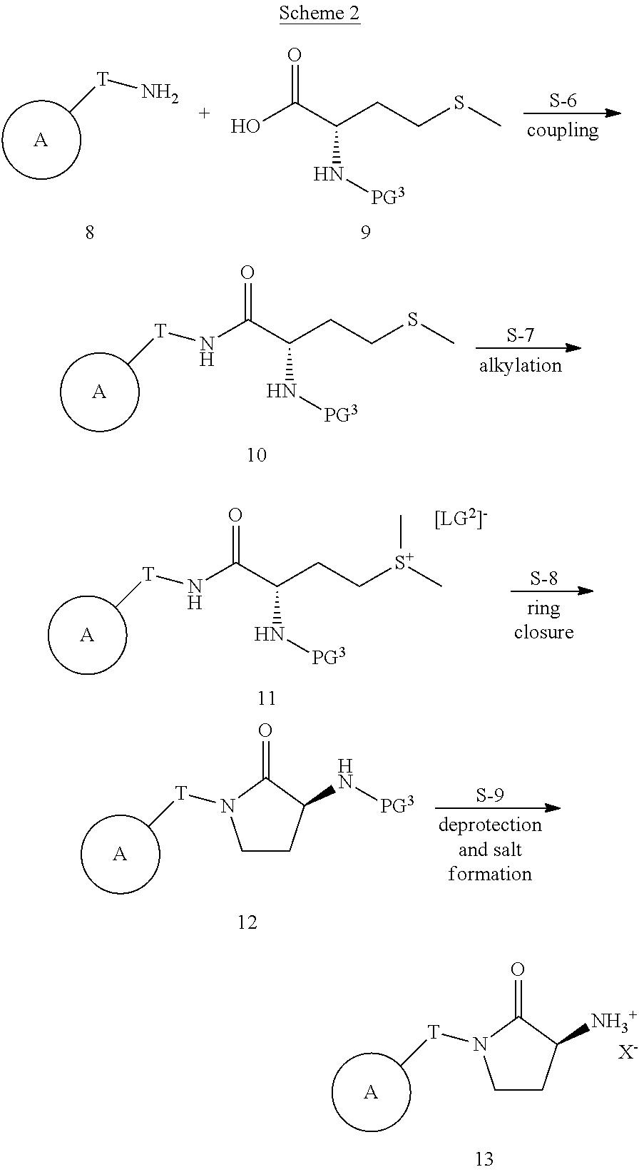 US8252829B2 - Aminopyrrolidinone derivatives and uses