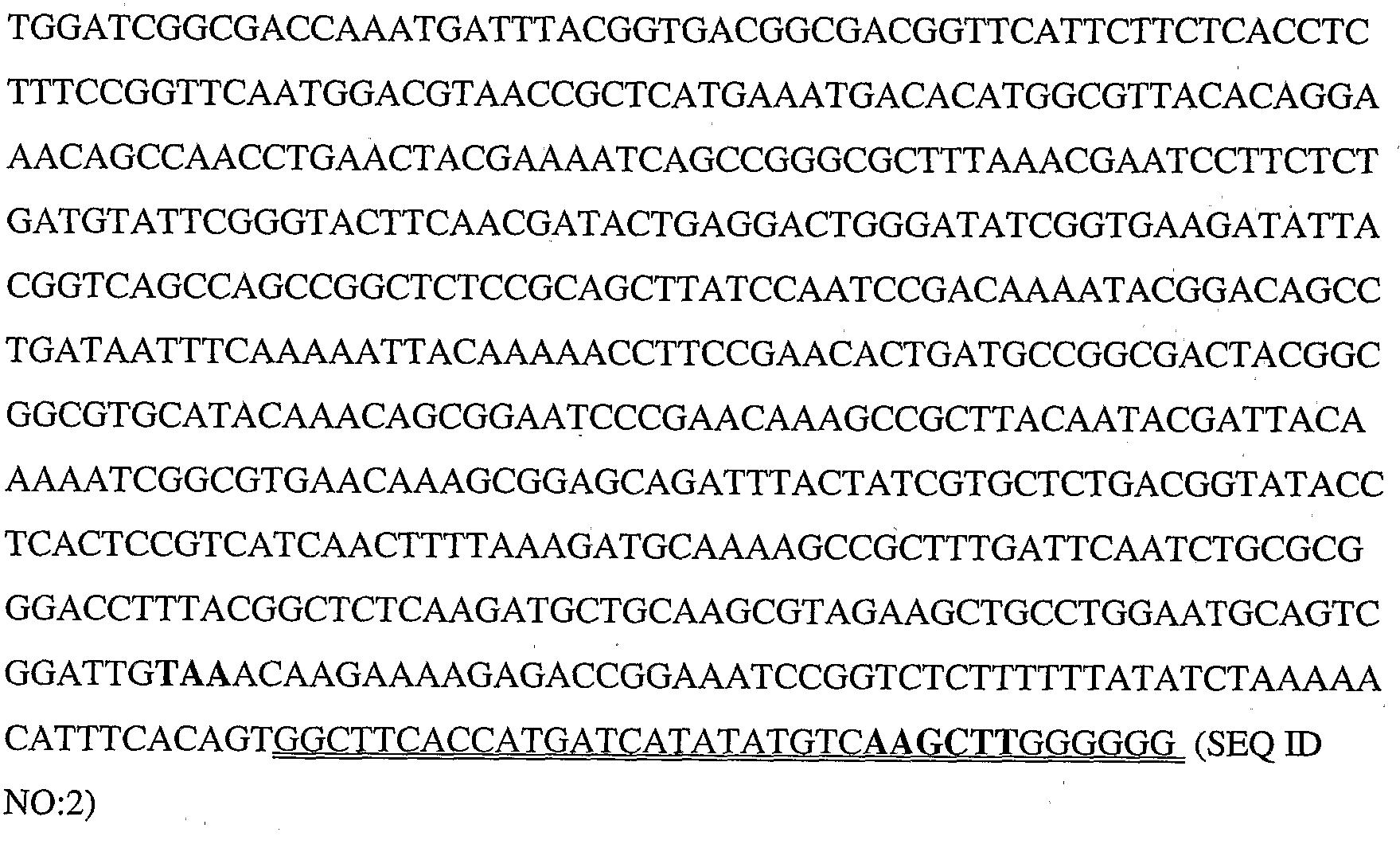 Figure 112008026135616-PCT00004
