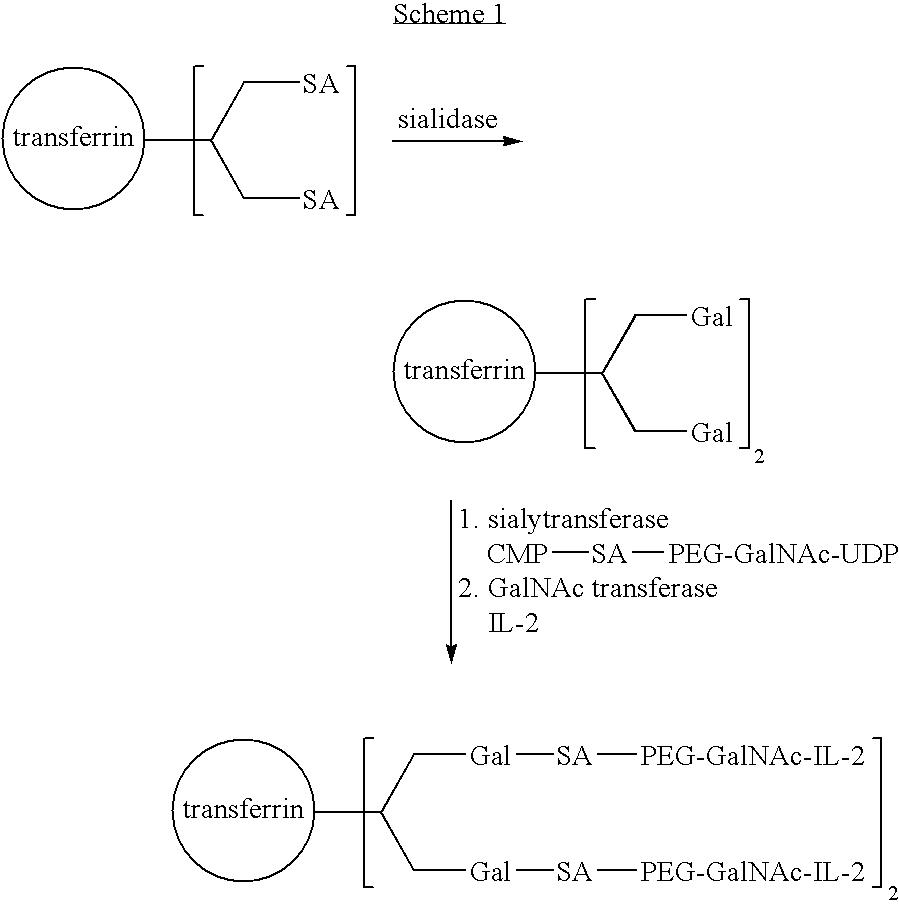 Figure US07173003-20070206-C00018
