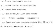 RU2194054C2 - Синтетические <b>аналоги</b> il-10 - Google Patents