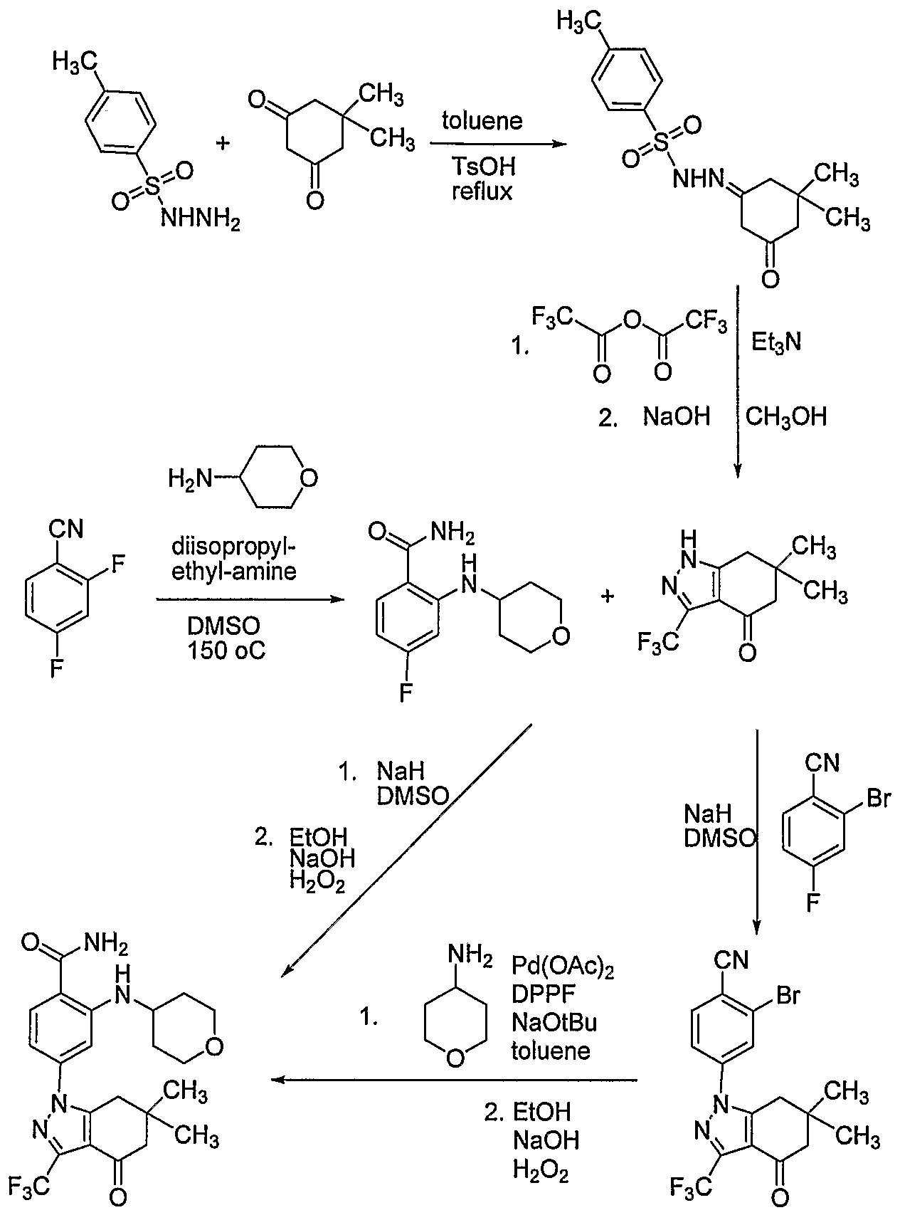 WO2006091963A1 - Tetrahydroindolone and tetrahydroindazolone