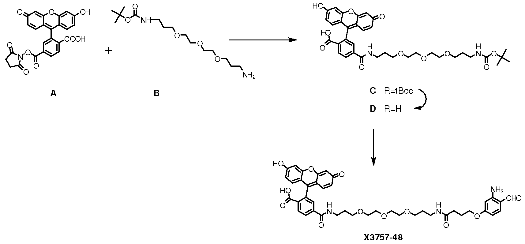 Figure pat00228