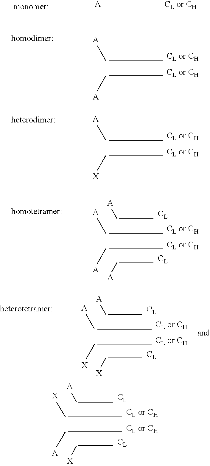 Figure US20060073570A1-20060406-C00002