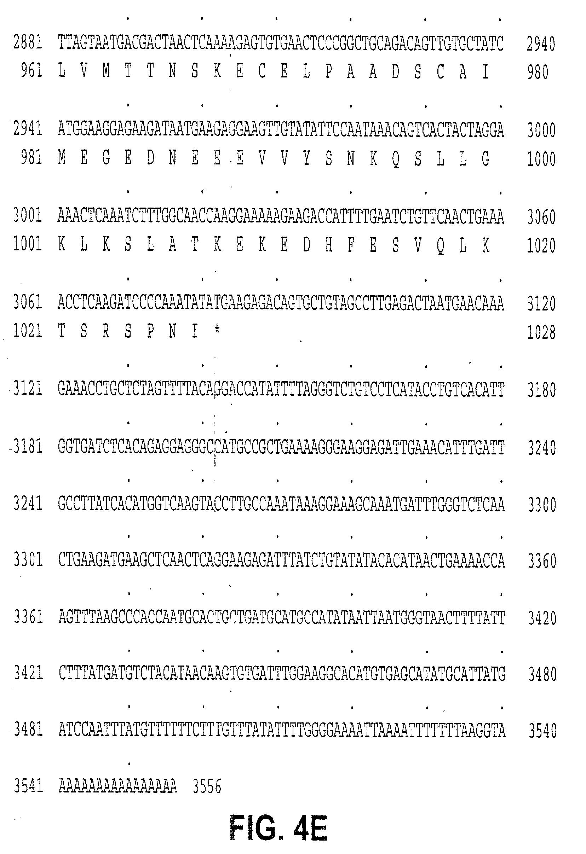 US20030072736A1 - Human tumor necrosis factor receptor TR16 - Google