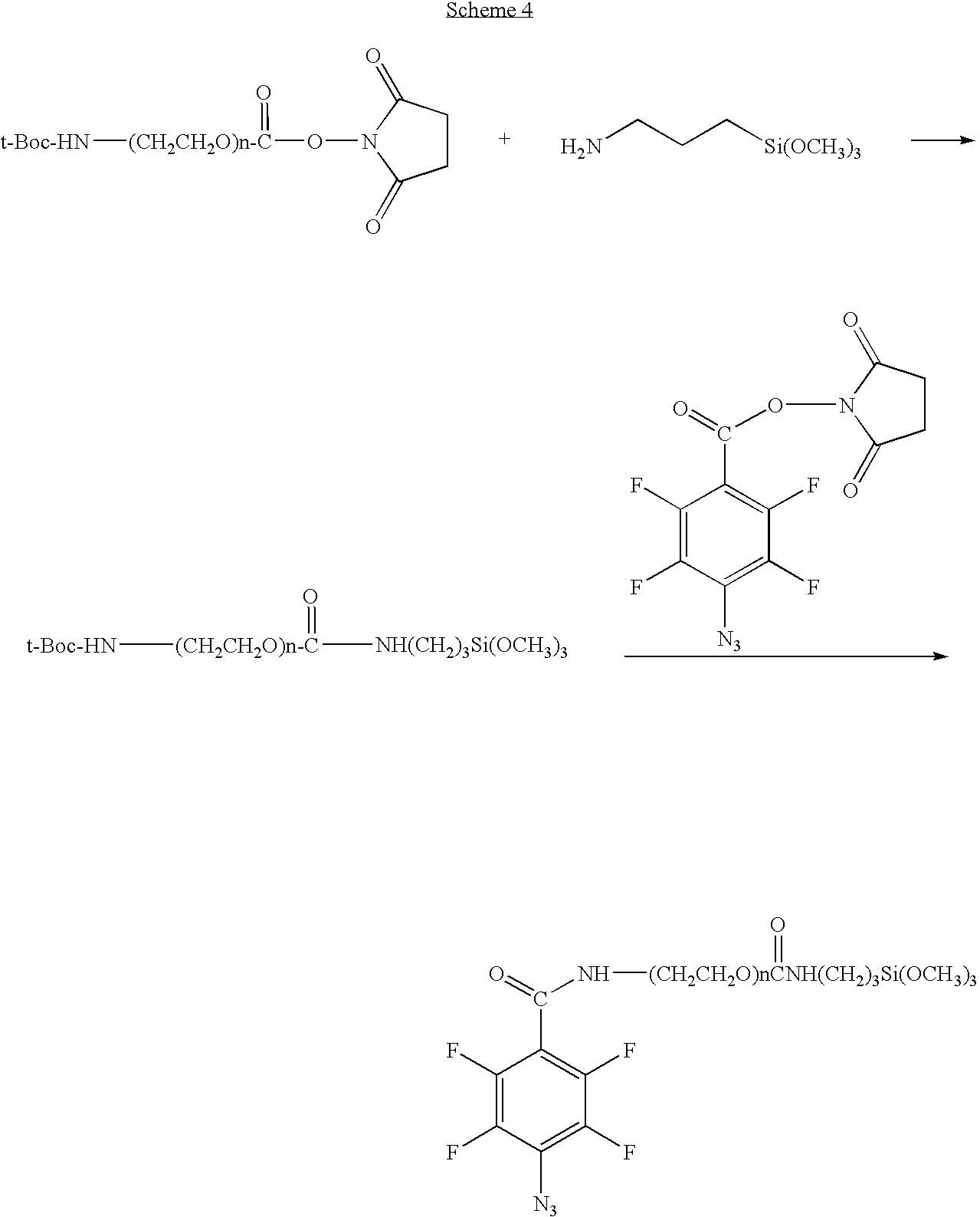 Figure US20100028559A1-20100204-C00004