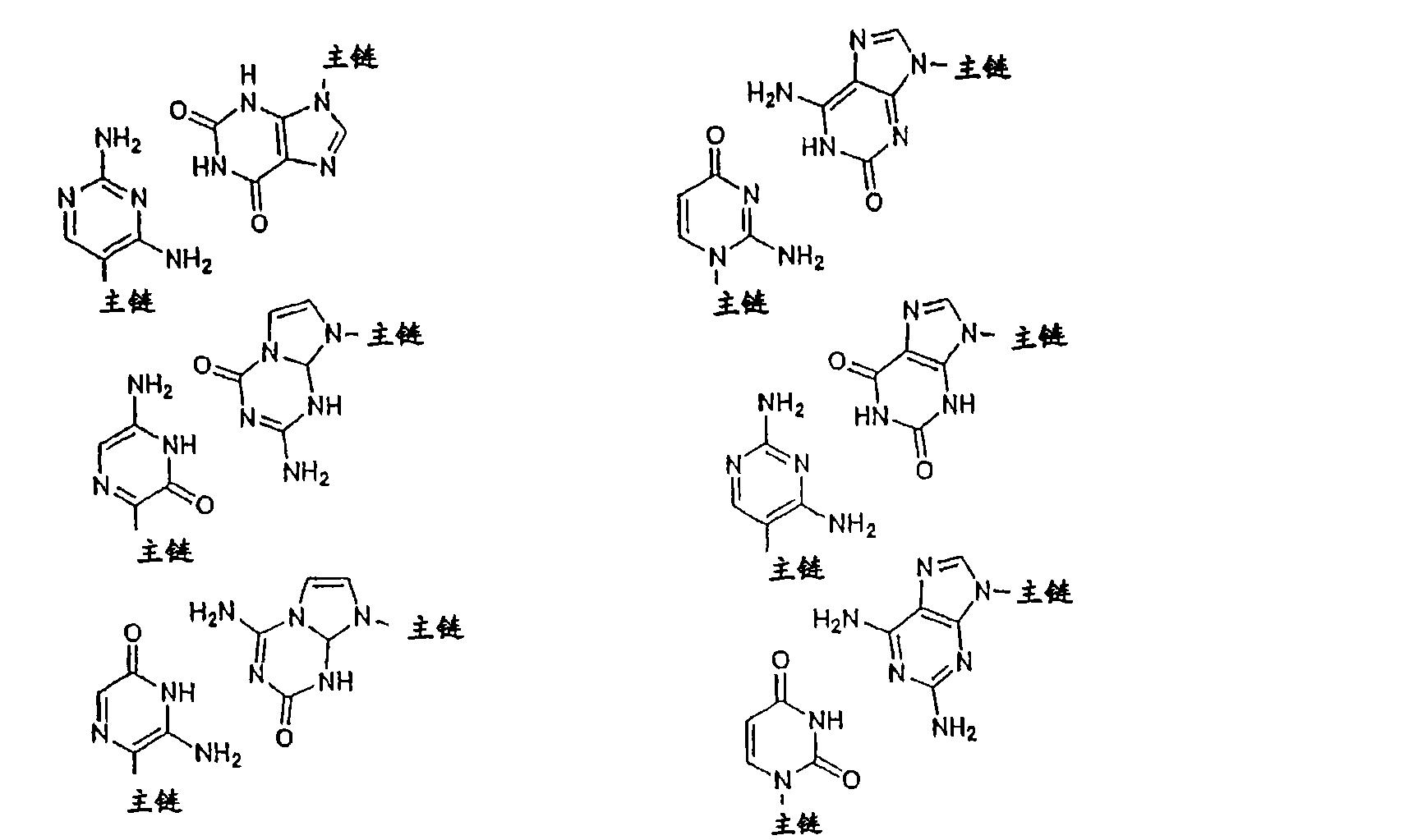 Figure CN101006177BD00212