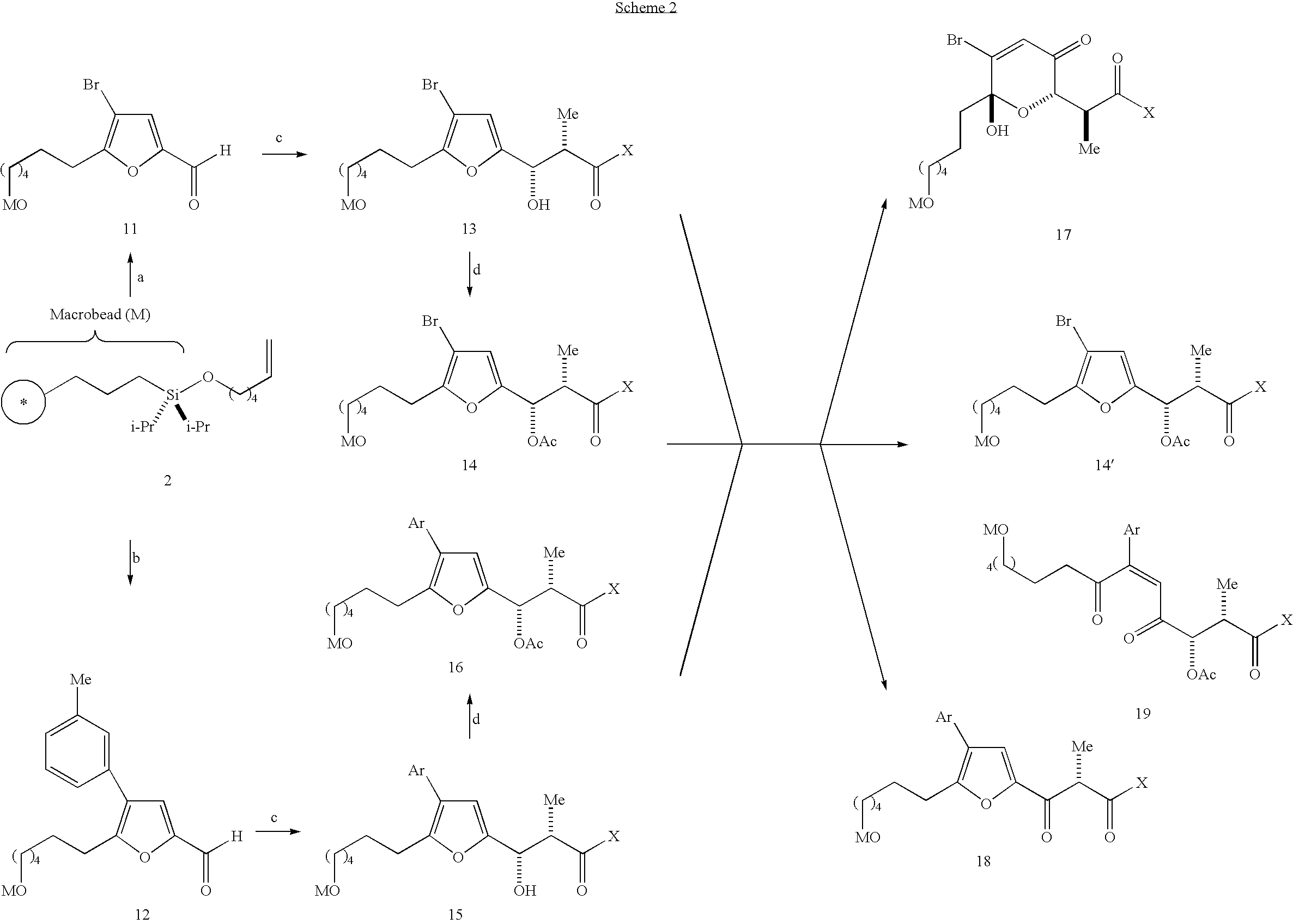 Figure US20040214232A1-20041028-C00022