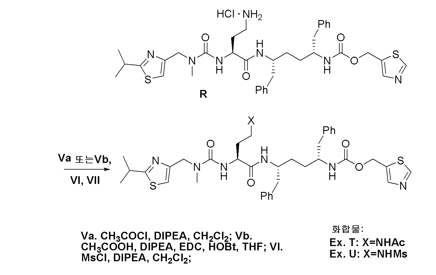 Figure pat00165