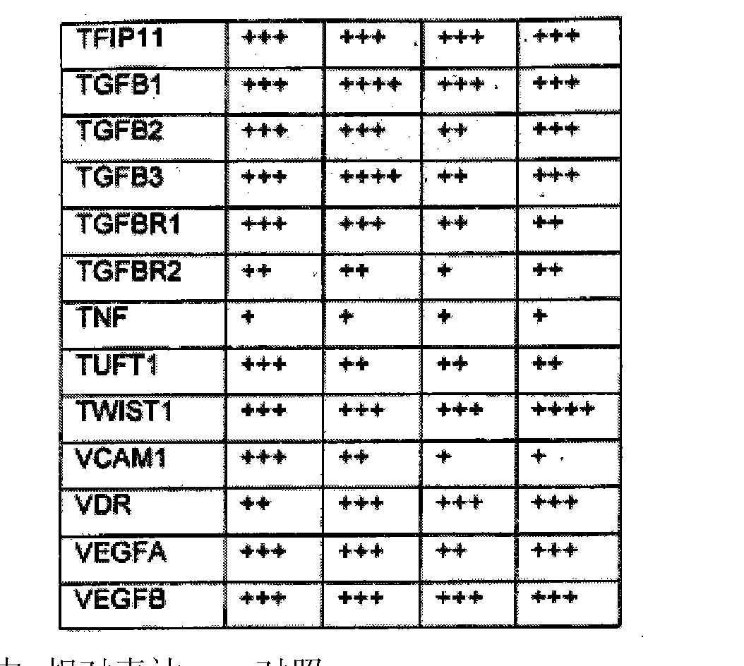 Figure CN102176919AD00631