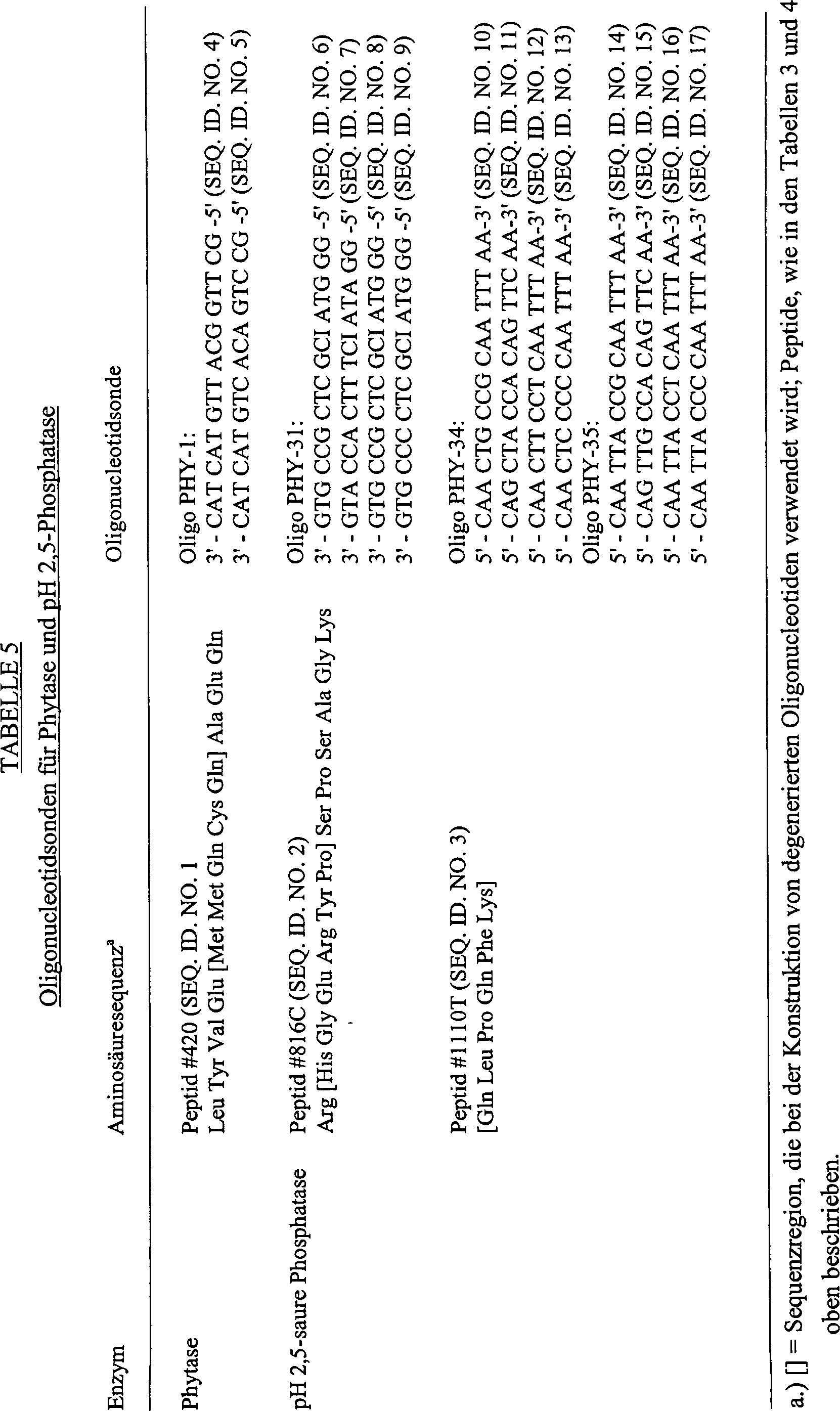 DE69333747T2 - Recombinant cell, dna constructions, vectors and ...