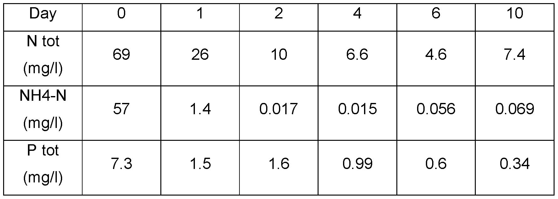 Figure imgf000012_0001