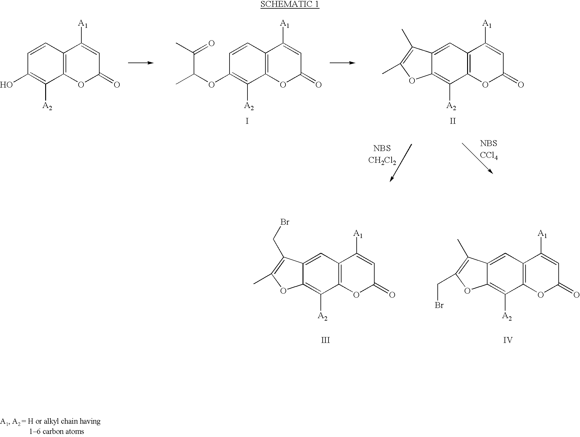 Figure US20020192632A1-20021219-C00003