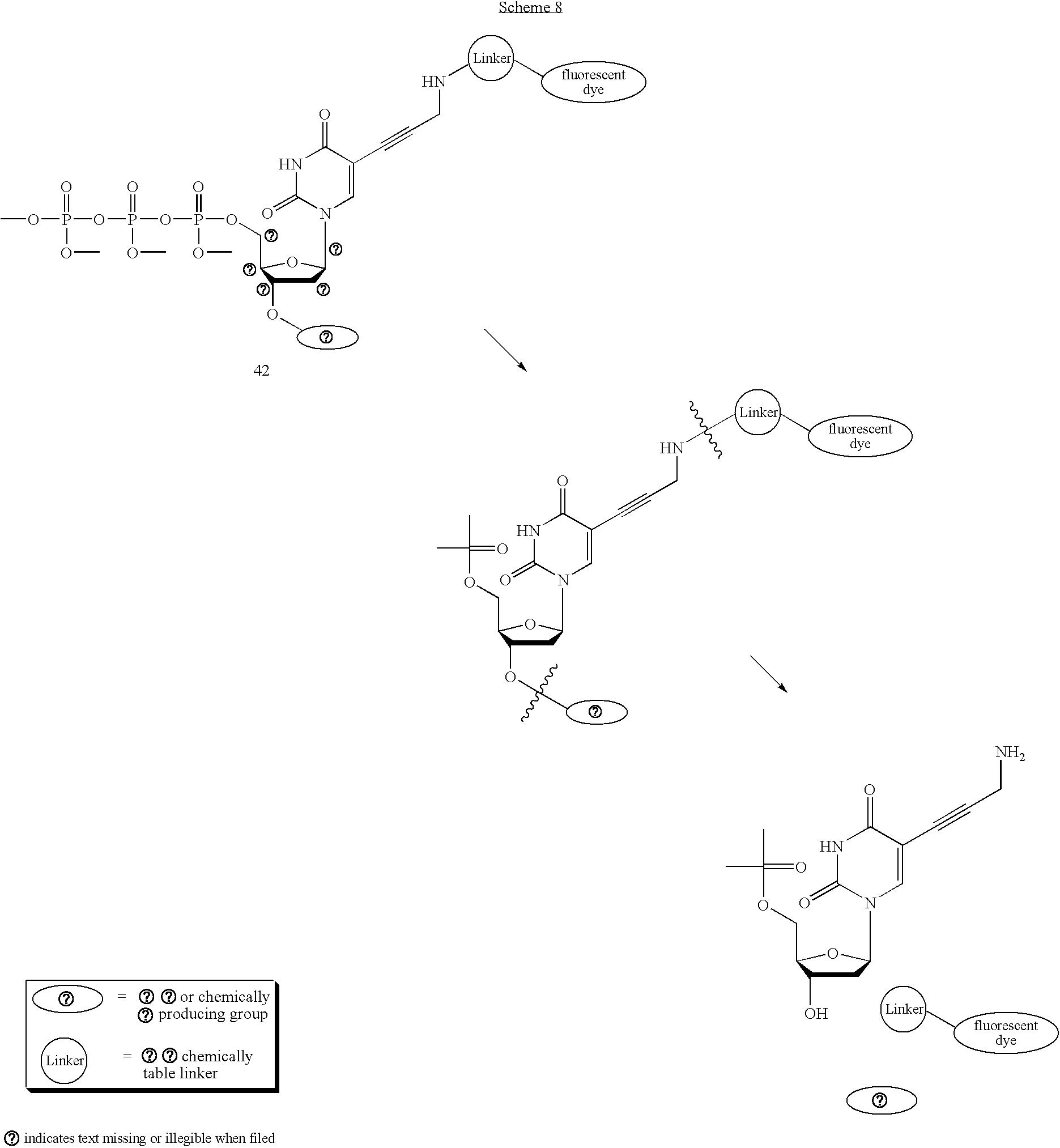 Figure US20050170367A1-20050804-C00013