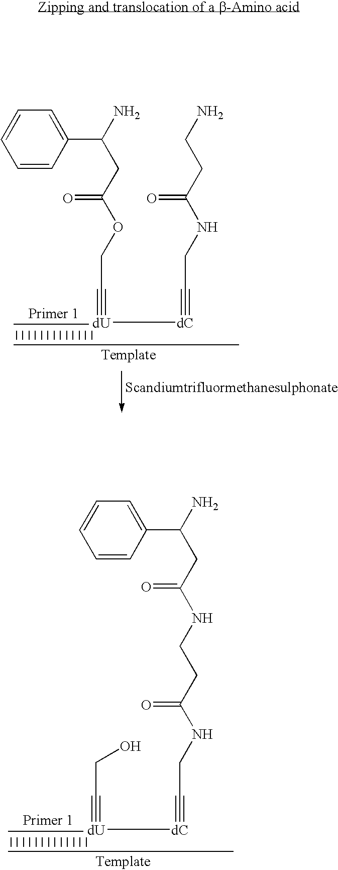 Figure US07727713-20100601-C00093